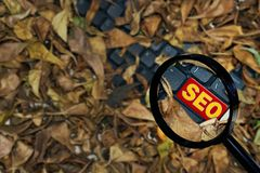 seo font on the keyboard, which is covered with dry leaves, with a magnifying glass royalty free stock photo