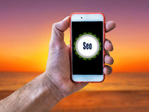 Seo Marketing Concept Hand hållande mobil på strandbakgrund Arkivbild