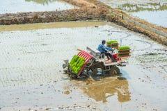 SEOEL, ZUID-KOREA - MEI 17: Rijst die door rijstplantmachine planten Stock Fotografie