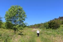 Señora que camina en sendero del campo con los árboles Fotografía de archivo