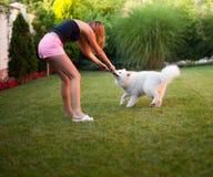 Señora que juega con su perro Fotos de archivo