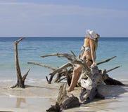 Señora tropical Imagen de archivo