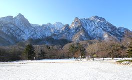 Seorak山国家公园 库存图片
