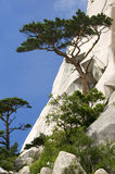 seoraksan νότος πάρκων της Κορέας εθνικός Στοκ εικόνα με δικαίωμα ελεύθερης χρήσης