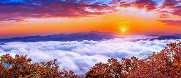 Seoraksan Mountains Is Covered By Morning Fog And Sunrise In Korea. Royalty Free Stock Photos