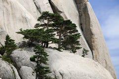 Seoraksan National Park,South Korea Royalty Free Stock Photo