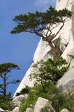 Seoraksan National Park,South Korea Royalty Free Stock Image