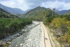 Seoraksan River Pathway Royalty Free Stock Images