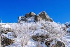 Seoraksanbergen in de winter, Korea stock afbeeldingen
