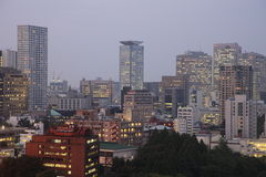 Seoul City Royalty Free Stock Photo