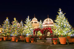 SEOUL, COREA - DICEMBRE 21,2014: Luci dell'albero di Natale a ninght Fotografia Stock Libera da Diritti