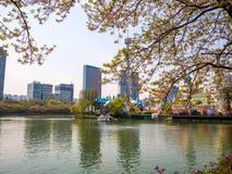 SEOUL, COREIA - 17 DE ABRIL DE 2018: Parque e flor de cerejeira de Lotte World Seokchon Lake no seasson do verão em Seoul, Coreia Imagens de Stock Royalty Free