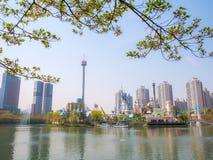 SEOUL, COREIA - 17 DE ABRIL DE 2018: Parque e flor de cerejeira de Lotte World Seokchon Lake no seasson do verão em Seoul, Coreia Fotos de Stock