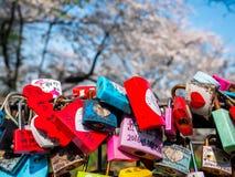 Seoul, Coreia do Sul - 16 de abril de 2018: Ame a chave e a montanha namsan das flores de cerejeira na temporada de verão na torr foto de stock royalty free
