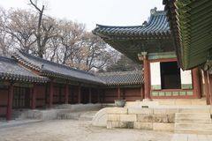 Seoul Eastern Palace Changdeokgung in Seoul, South Korea Royalty Free Stock Photo
