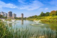 Seoul Forest Park na cidade de Seoul, Coreia do Sul fotografia de stock royalty free