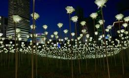 Seoul, Korea-May 19, 2017: LED Roses at  Dongdaemun Design Plaza Royalty Free Stock Photography