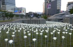 Seoul, Korea-May 19, 2017: LED Roses at  Dongdaemun Design Plaza Royalty Free Stock Photos