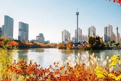 Seokchon lake and modern apartment buildings with autumn maple at Seoul, Korea royalty free stock photo