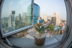 Seoul stad i Sydkorea, fönstersikt Royaltyfria Bilder