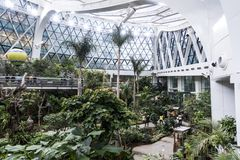 Seoul Sydkorea - 4 februari 2019: inom sikt av det botaniska växthuset av Seoul parkera, seoul, Sydkorea royaltyfri bild