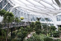 Seoul Sydkorea - 4 februari 2019: inom sikt av det botaniska växthuset av Seoul parkera, seoul, Sydkorea arkivbild