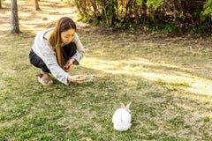 Seoul Sydkorea - Juni 4, 2017: Den unga koreanska kvinnan tar det mobila fotoet av kanin i parkerar på den Seonyudo ön i Seoul arkivbilder
