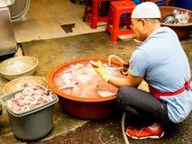 Seoul Sydkorea - Juni 26, 2017: Marknadsarbetaren gör ren tioarmade bläckfiskar i den Gwangjang marknaden Seoul arkivbild