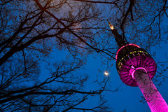 Seoul Tower. Famous place in seoul Royalty Free Stock Image