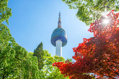 Seoul Tower and red autumn maple leaves at Namsan mountain in So Stock Photo