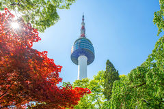Seoul Tower and red autumn maple leaves at Namsan mountain in So Royalty Free Stock Image