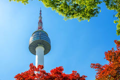 Seoul Tower and red autumn maple leaves at Namsan mountain in So Stock Photography