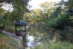 Seoul UNESCO World Heritage Changdeokgung Secret Garden, South Korea royalty free stock image
