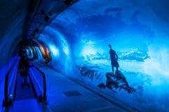 Alpine sensation at Jungfraujoch in Switzerland - Jungfrau exhibition in Tunnel royalty free stock photography
