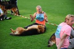 SEP 07, 2014 Nurnberg niemieckiej bacy Duży psi przedstawienie w niemiec Zdjęcie Royalty Free