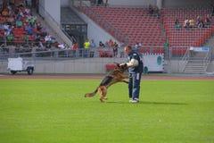 SEP 07, 2014 Nurnberg zdolności Pracujący test na dużej niemiec ona Fotografia Royalty Free