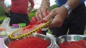 Separação de caviar vermelho fresco dos salmões, antes como salgando filme