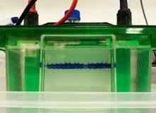 Separación de proteínas y de DNA por la técnica de la electroforesis del gel imagenes de archivo