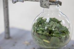Separación por la condensación de la filtración y de la evaporación las sustancias componentes de mezcla líquida en laboratorio imagen de archivo