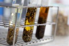 Separación por la condensación de la filtración y de la evaporación las sustancias componentes de mezcla líquida en laboratorio imágenes de archivo libres de regalías