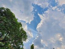 Separat moln royaltyfria bilder