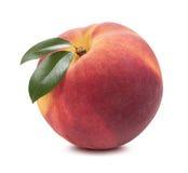 Separat persika för singel som isoleras på vit bakgrund Royaltyfria Foton