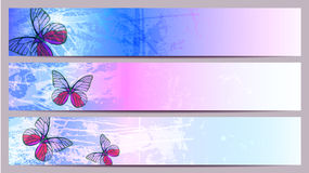 Separated banners for your text. With butterflys Royalty Free Stock Image