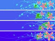 Separated floral banner set Stock Photo