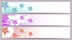 Separated flourishes banners. Separated banners with floral elements and different colors Royalty Free Stock Photo