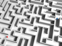 Separated in the Maze Stock Photography