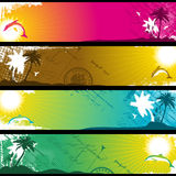 Separated Tropical Banners. For your text Royalty Free Stock Image