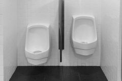 Separated urinals Stock Image