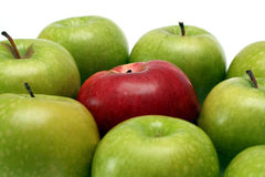 Separation concepts with apples. Separation concepts - red apple between green apples Stock Image