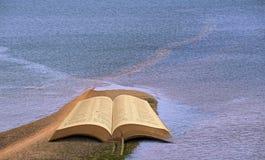 Separazione del miracolo Mosè della bibbia del suph dell'igname fotografie stock libere da diritti